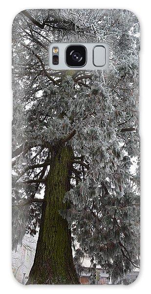 Frozen Tree 2 Galaxy Case by Felicia Tica