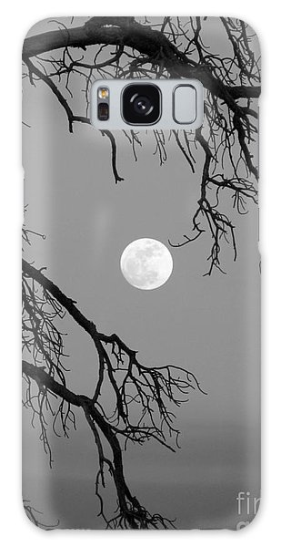 Full Moon Old Snag Galaxy Case