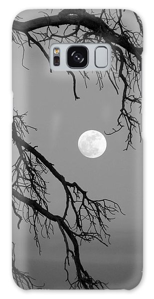 Full Moon Old Snag Galaxy Case