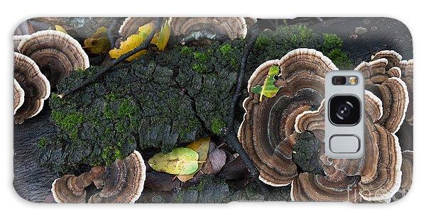 Fungi Contrast Galaxy Case
