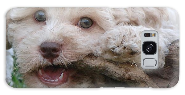 Funny Face Puppy Galaxy Case