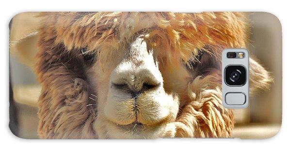 Fuzzy Wuzzy Alpaca Galaxy Case