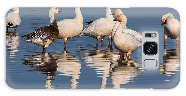 Gaggle Of Snow Geese Reflected Galaxy Case