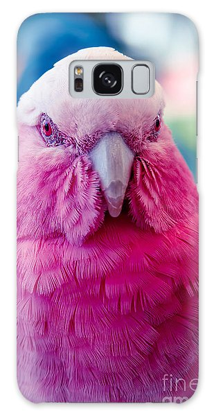 Galah - Eolophus Roseicapilla - Pink And Grey - Roseate Cockatoo Maui Hawaii Galaxy Case