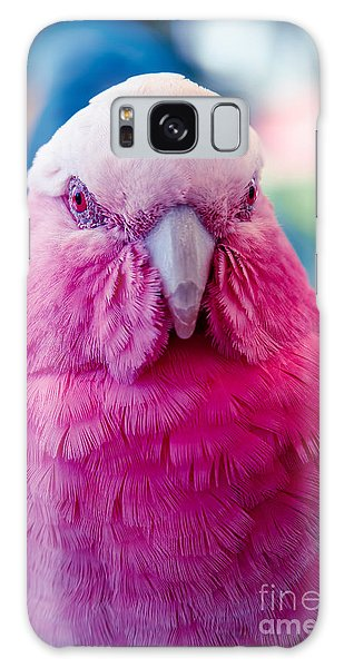 Galah - Eolophus Roseicapilla - Pink And Grey - Roseate Cockatoo Maui Hawaii Galaxy Case