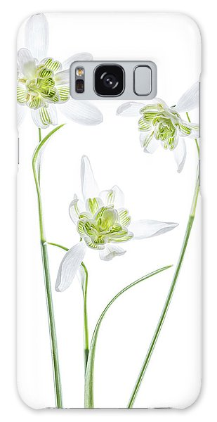 Higher Galaxy Case - Galanthus Flore Pleno by Mandy Disher