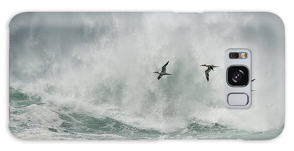 Gannets Past A Raging Sea. Galaxy Case