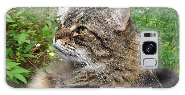 Garden Cat Galaxy Case