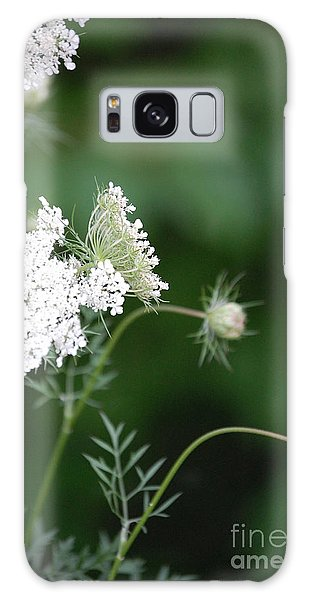 Garden Lace Group By Jammer Galaxy Case