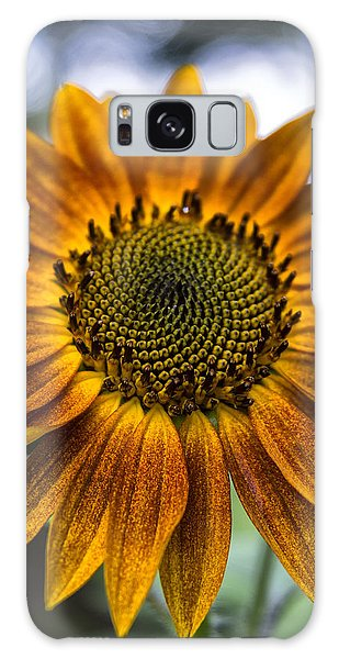 Garden Sunflower Galaxy Case