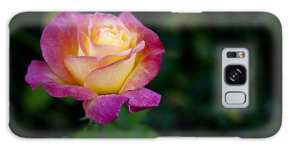 Garden Tea Rose Galaxy Case by David Millenheft