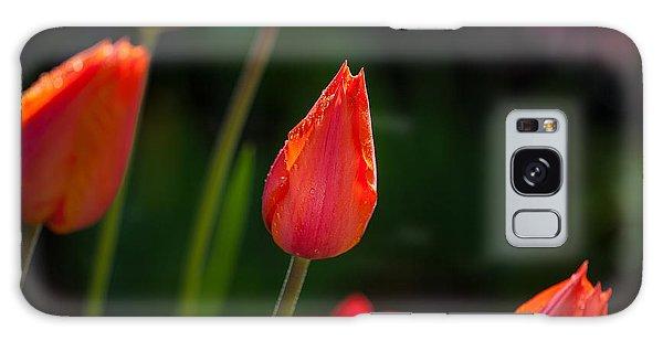 Garden Tulips Galaxy Case
