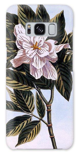 Gardenia Galaxy Case - Gardenia G Augusta by Pierre Joseph Buchoz