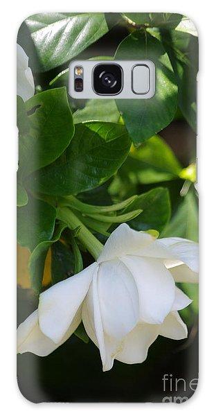 Gardenia Galaxy Case