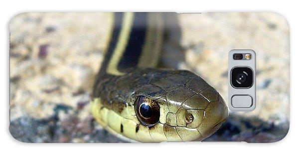 Garter Snake Galaxy Case