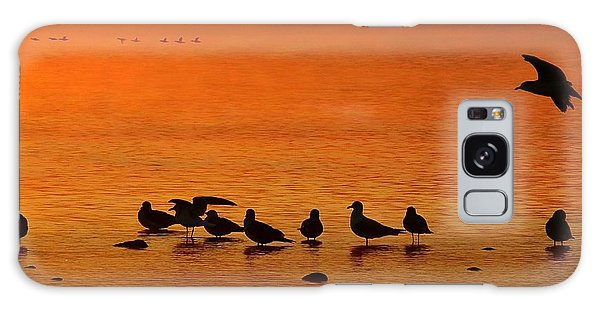 Gathering At Sunrise Galaxy Case by Nick Kloepping