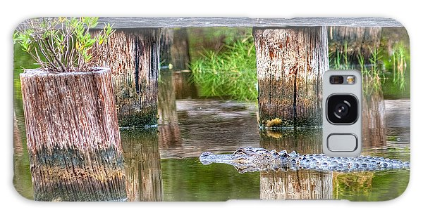 Gator At The Old Trestle Galaxy Case