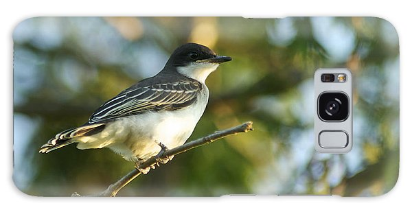 Gazing Eastern Kingbird  Galaxy Case
