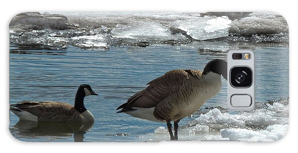 Galaxy Case featuring the photograph Geese And Cold Feet by Kristen Fox