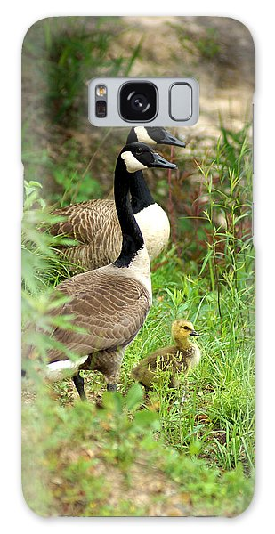 Geese And Gosling Galaxy Case
