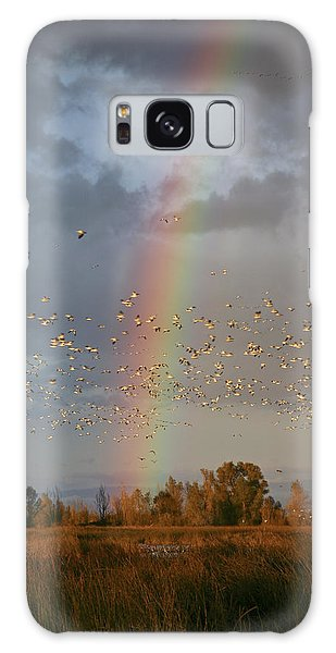 Geese And Rainbow Galaxy Case