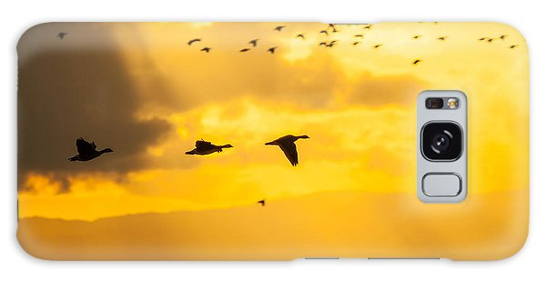 Geese At Sunset-2 Galaxy Case