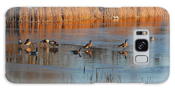 Geese In Wetlands Galaxy Case