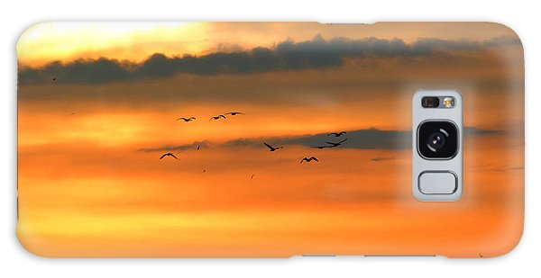 Geese Into The Sunset Galaxy Case