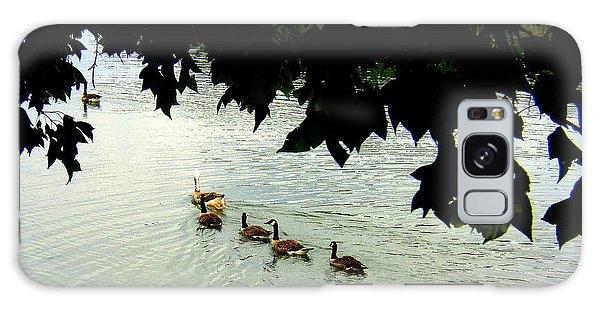 Geese On The Lake Galaxy Case by Paula Tohline Calhoun