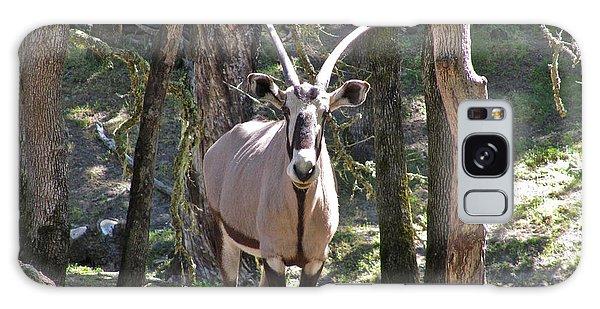 Gemsbok In The Woods Galaxy Case by CML Brown