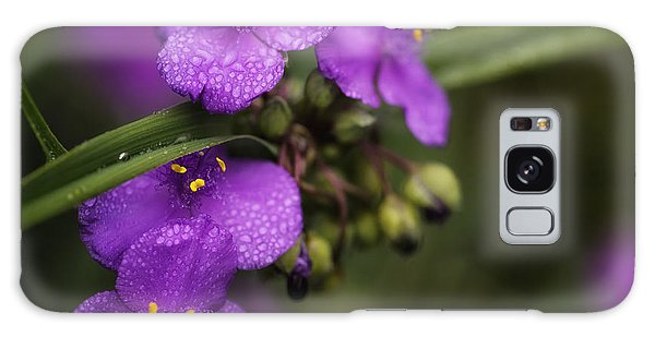 Gentle Rain Galaxy Case