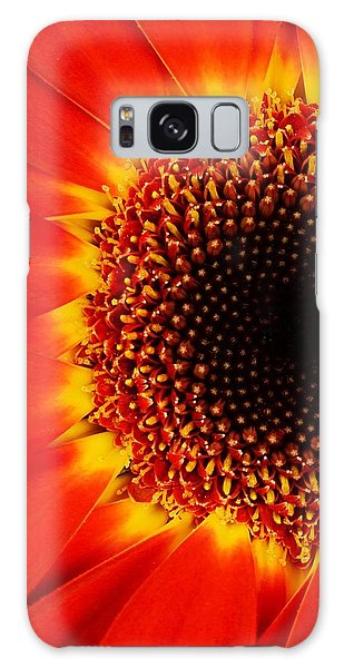 Gerbera Daisy Galaxy Case