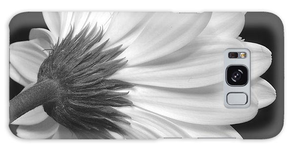 Gerbera Daisy Monochrome Galaxy Case by Jeannie Rhode