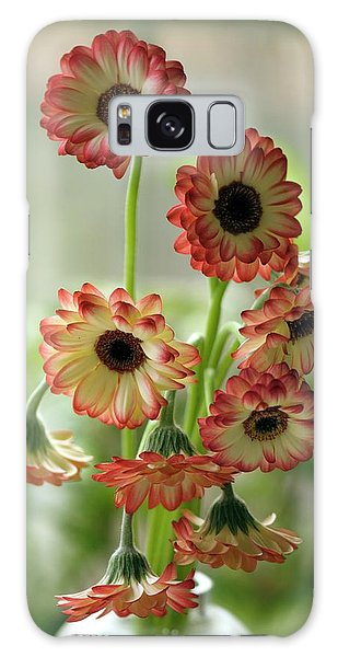 Vase Of Flowers Galaxy Case - Gerbera Jamesonii In Vase by Maria Mosolova/science Photo Library