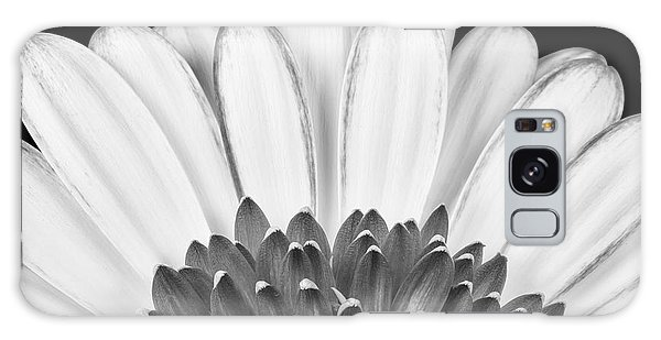 Daisy Galaxy S8 Case - Gerbera Rising by Adam Romanowicz