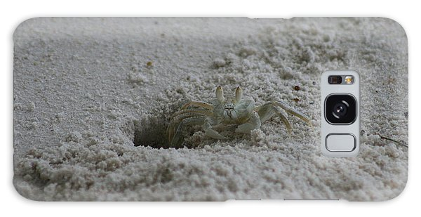 Galaxy Case featuring the photograph Ghost Crab by Debbie Cundy