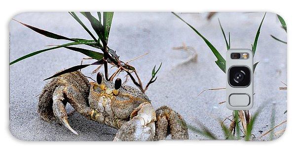 Ghost Crab Galaxy Case