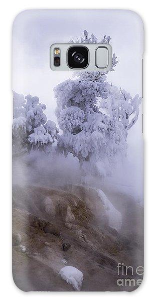 Ghost Tree Galaxy Case
