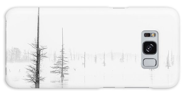 Ghost Trees Lake Conway Galaxy Case