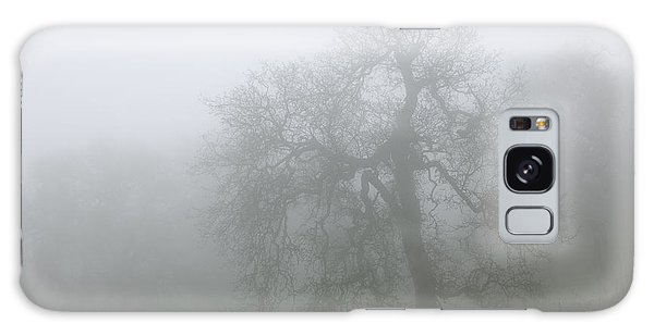 Ghostly Oak In Fog - Central California Galaxy Case by Ram Vasudev
