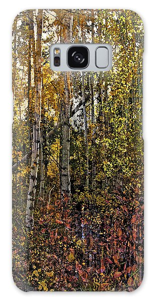 Ghosts Of A Quaking Aspen Galaxy Case