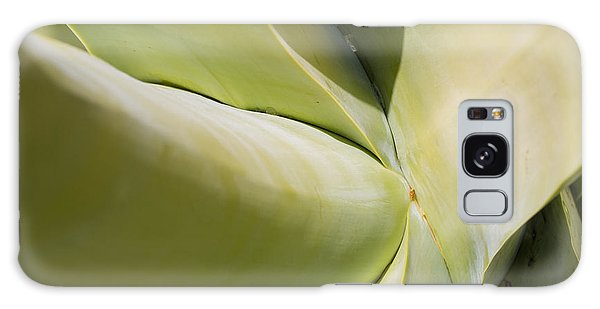 Giant Agave Abstract 9 Galaxy Case