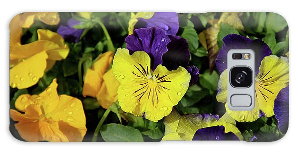 Giant Garden Pansies Galaxy Case