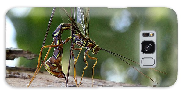 Giant Ichneumon Wasp Galaxy Case