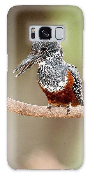 Giant Kingfisher Megaceryle Maxima Galaxy S8 Case