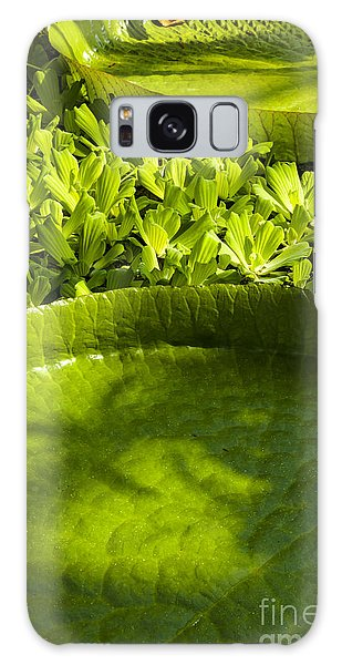 Giant Lily Pad Victoria Amazonica Galaxy Case