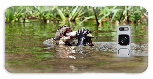 River Otter Galaxy Case - Giant Otter Eating A Fish by John Devries/science Photo Library