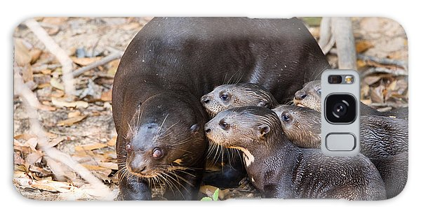 River Otter Galaxy Case - Giant Otter Pteronura Brasiliensis by Panoramic Images