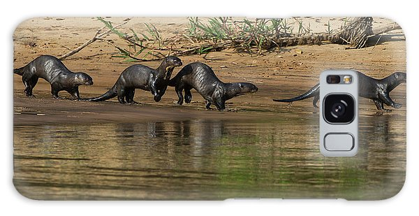 River Otter Galaxy Case - Giant Otter (pteronura Brasiliensis by Pete Oxford