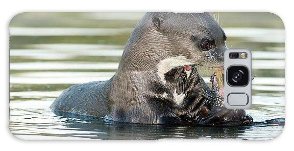 Otter Galaxy Case - Giant Otter by Tony Camacho/science Photo Library